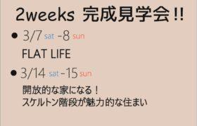 3/7-8 ・ 3/14-15   2週連続、完成おひろめ会を開催します‼
